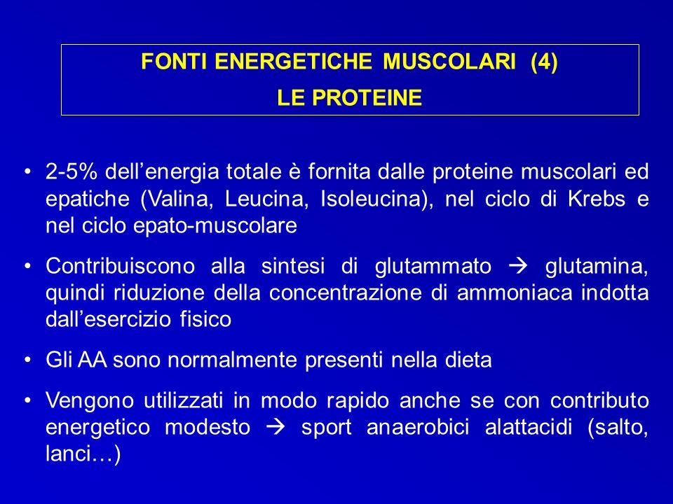 FONTI ENERGETICHE MUSCOLARI (4)