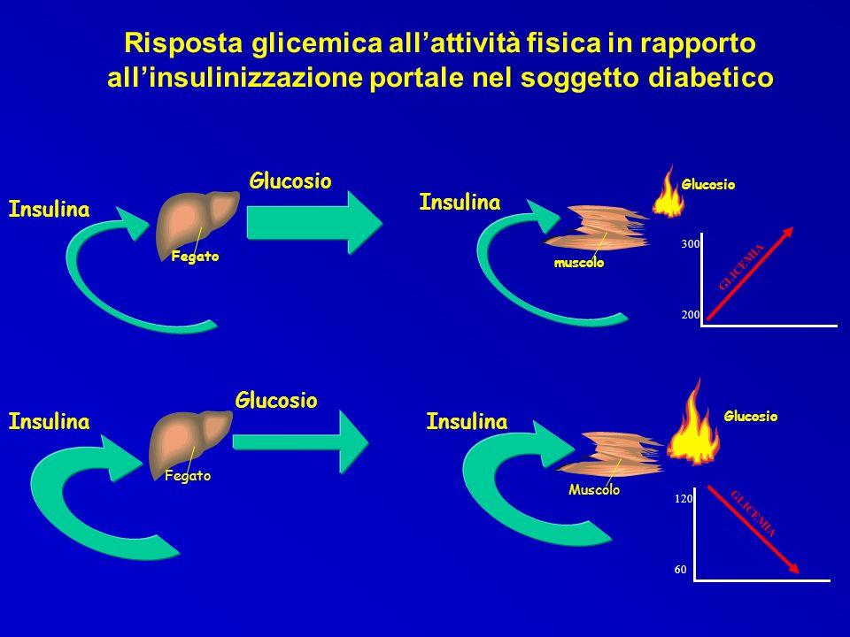 Risposta glicemica all'attività fisica in rapporto all'insulinizzazione portale nel soggetto diabetico