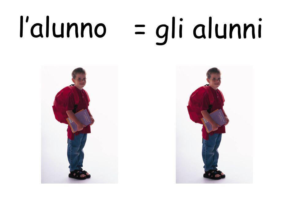 l'alunno = gli alunni