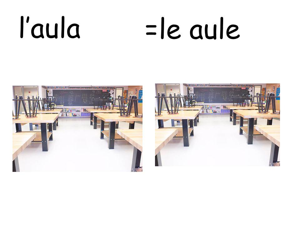 l'aula =le aule