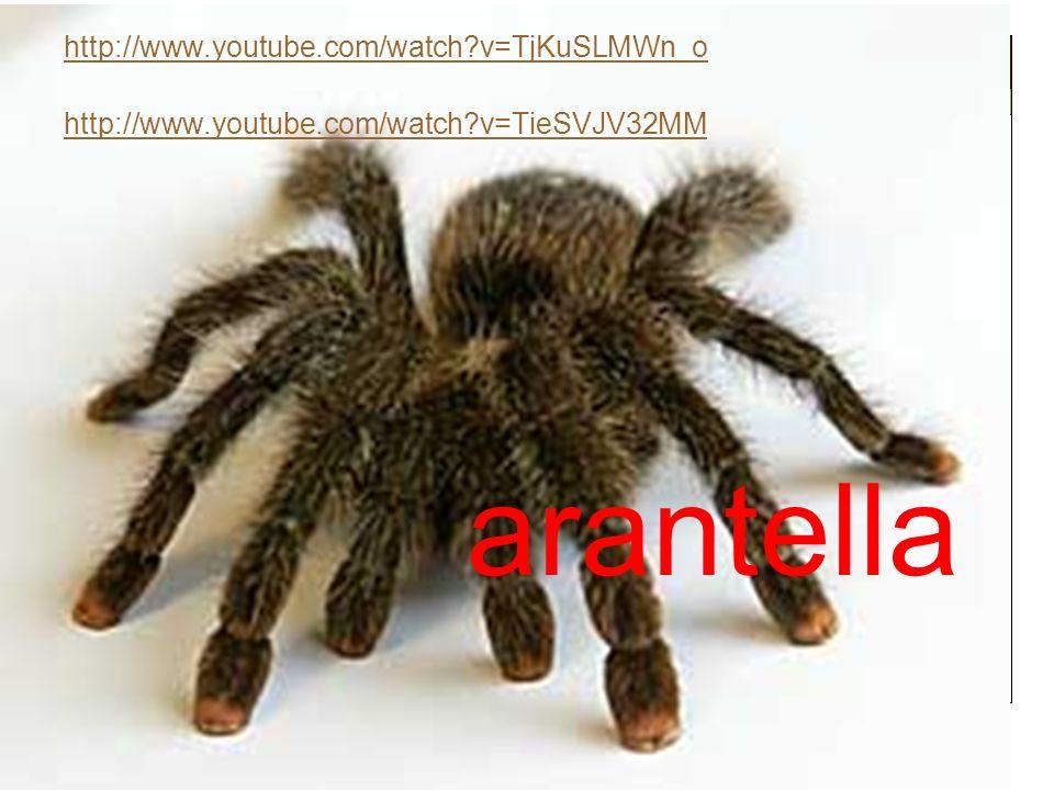 arantella http://www.youtube.com/watch v=TjKuSLMWn_o