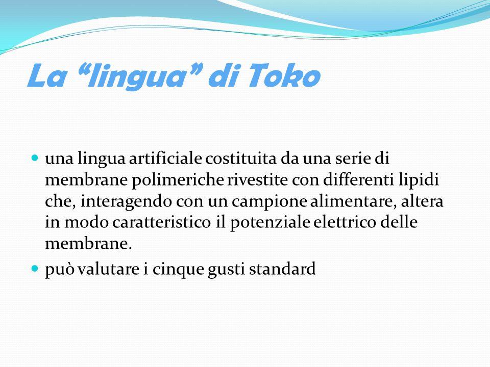 La lingua di Toko