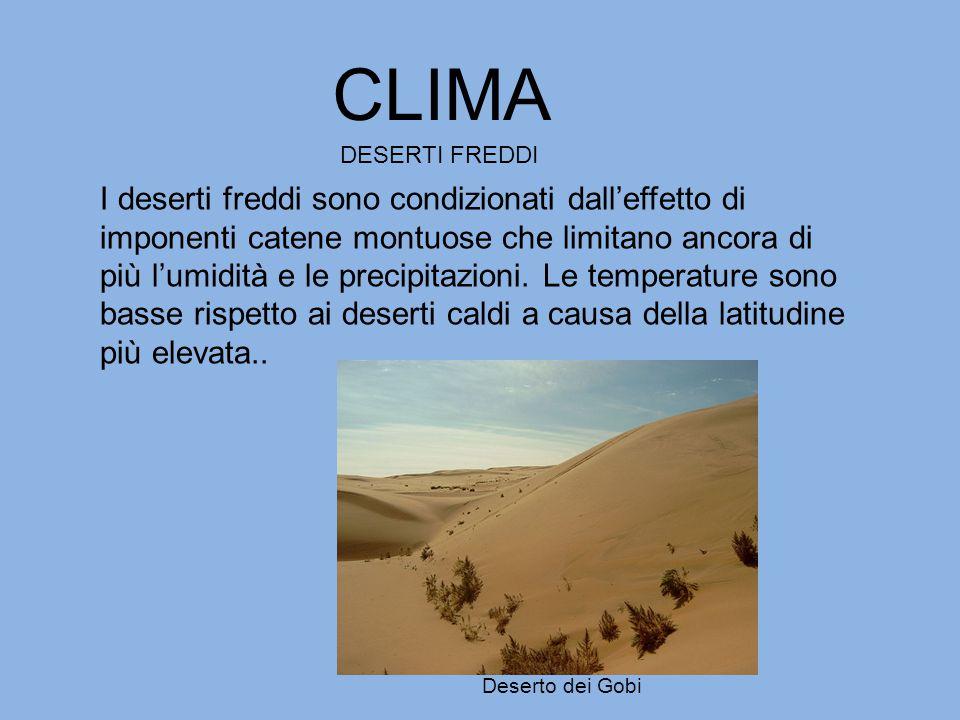CLIMA DESERTI FREDDI.