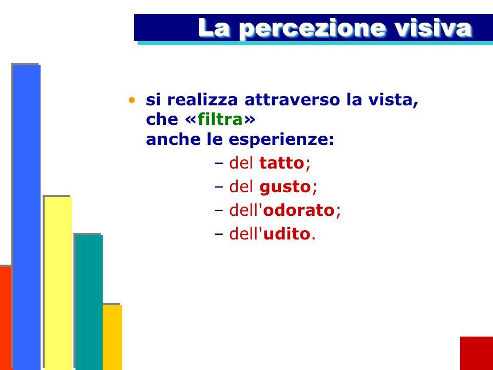 La percezione visivasi realizza attraverso la vista, che «filtra» anche le esperienze: del tatto;