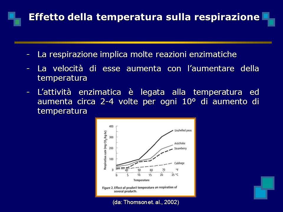 Effetto della temperatura sulla respirazione