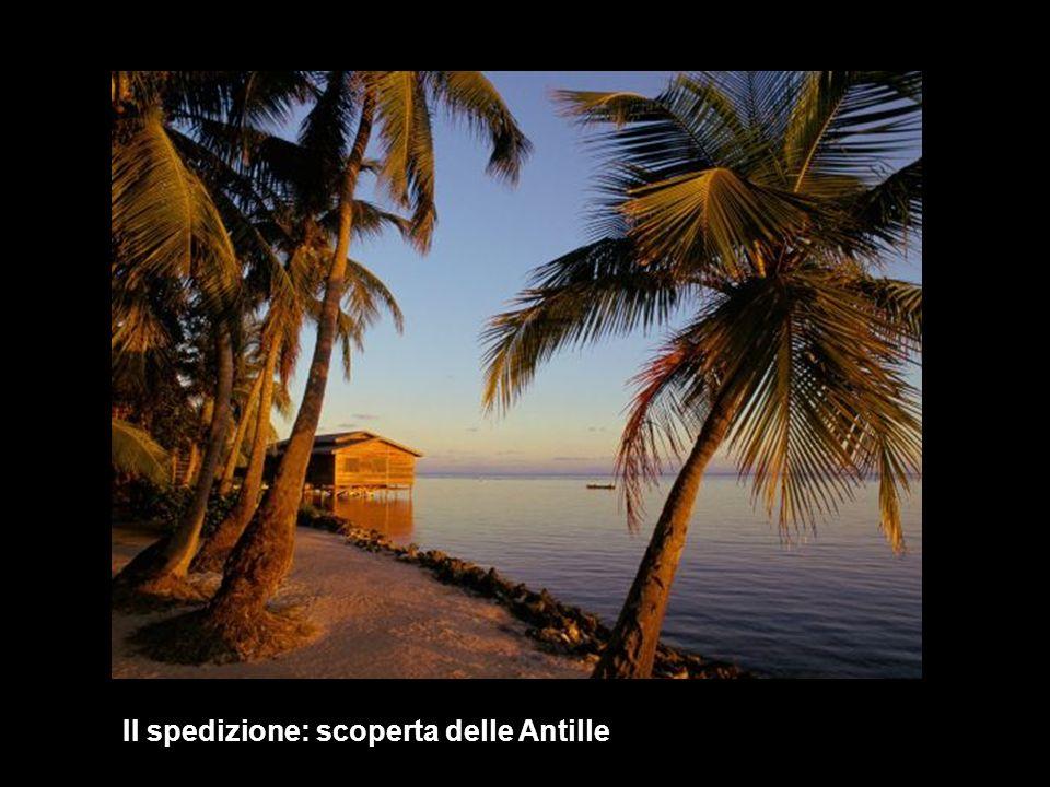 II spedizione: scoperta delle Antille