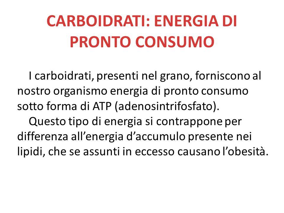 CARBOIDRATI: ENERGIA DI PRONTO CONSUMO