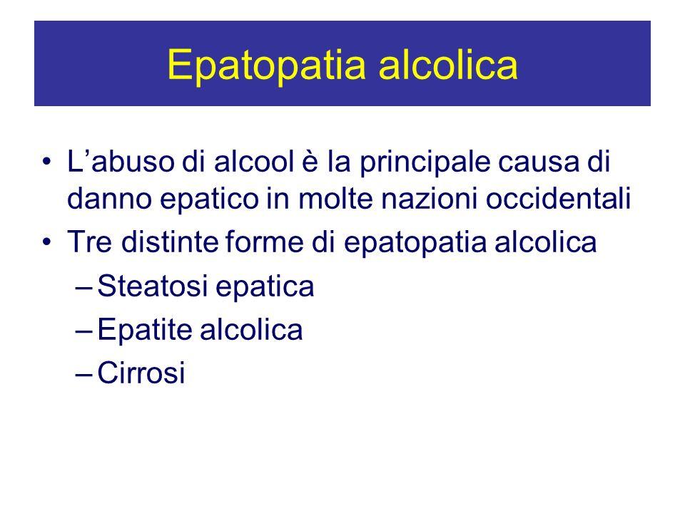 Epatopatia alcolicaL'abuso di alcool è la principale causa di danno epatico in molte nazioni occidentali.