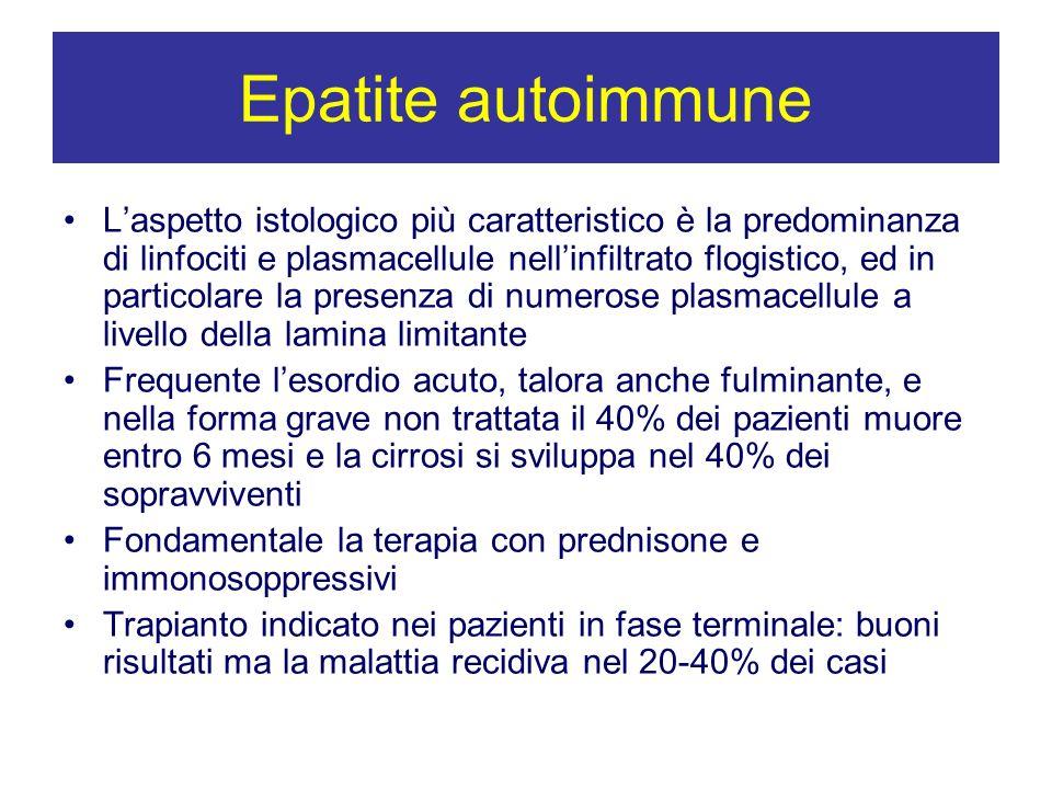 Epatite autoimmune