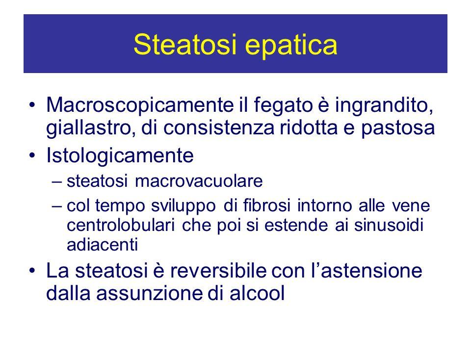 Steatosi epaticaMacroscopicamente il fegato è ingrandito, giallastro, di consistenza ridotta e pastosa.