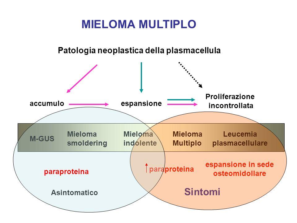 MIELOMA MULTIPLO Sintomi Patologia neoplastica della plasmacellula