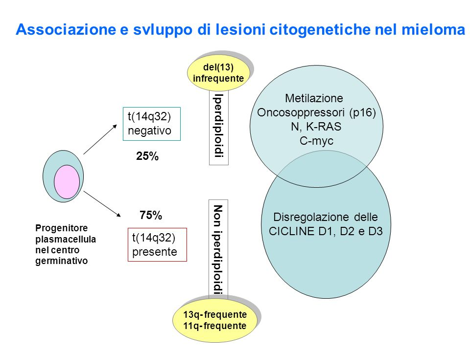 Associazione e svluppo di lesioni citogenetiche nel mieloma