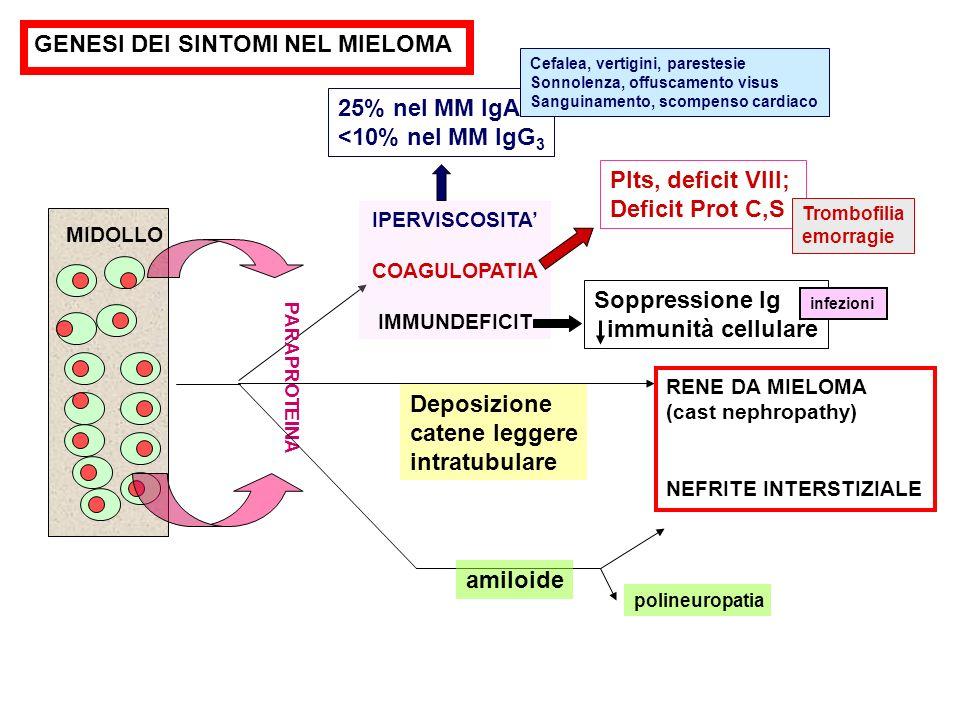 GENESI DEI SINTOMI NEL MIELOMA