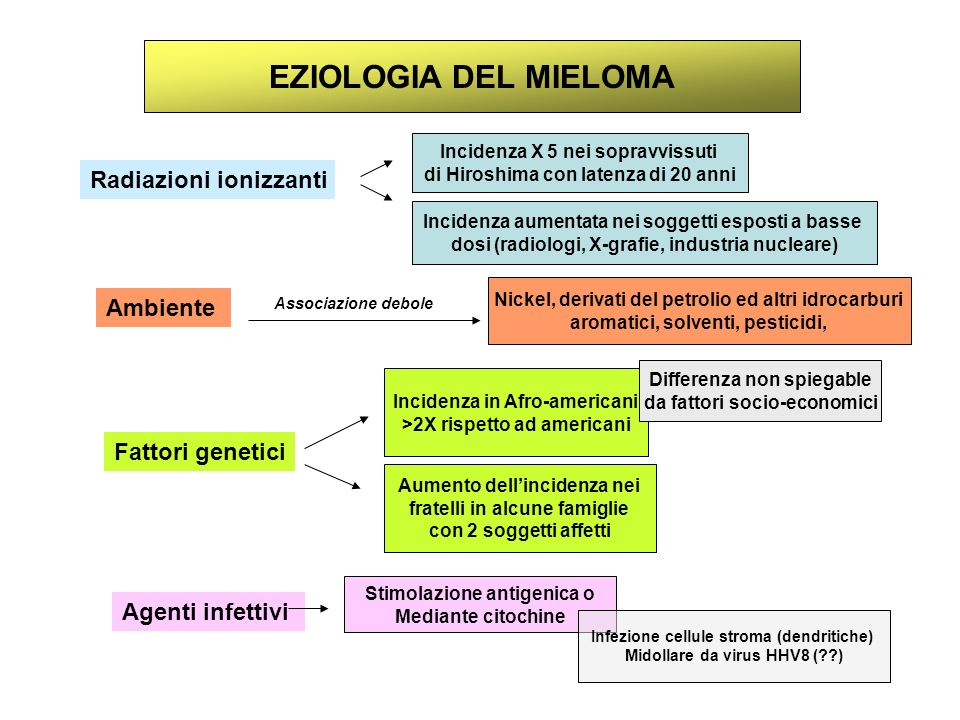 EZIOLOGIA DEL MIELOMA Radiazioni ionizzanti Ambiente Fattori genetici