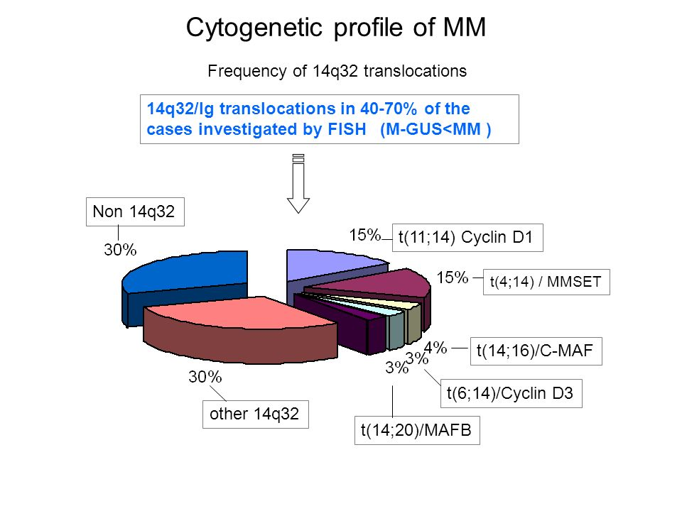 Cytogenetic profile of MM