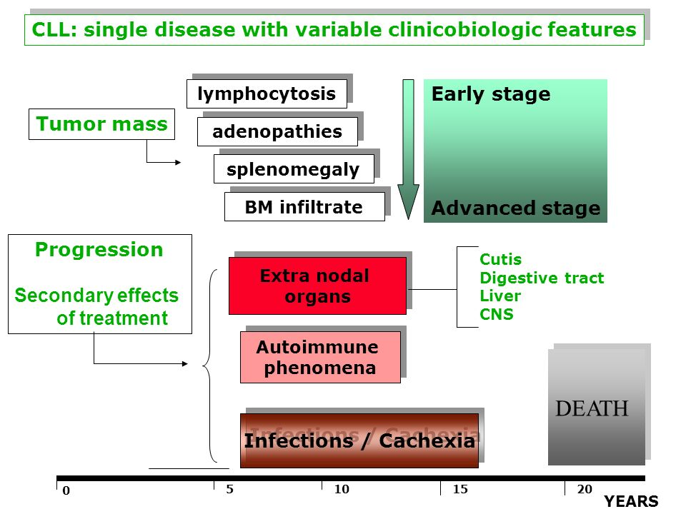 DEATH CLL: single disease with variable clinicobiologic features