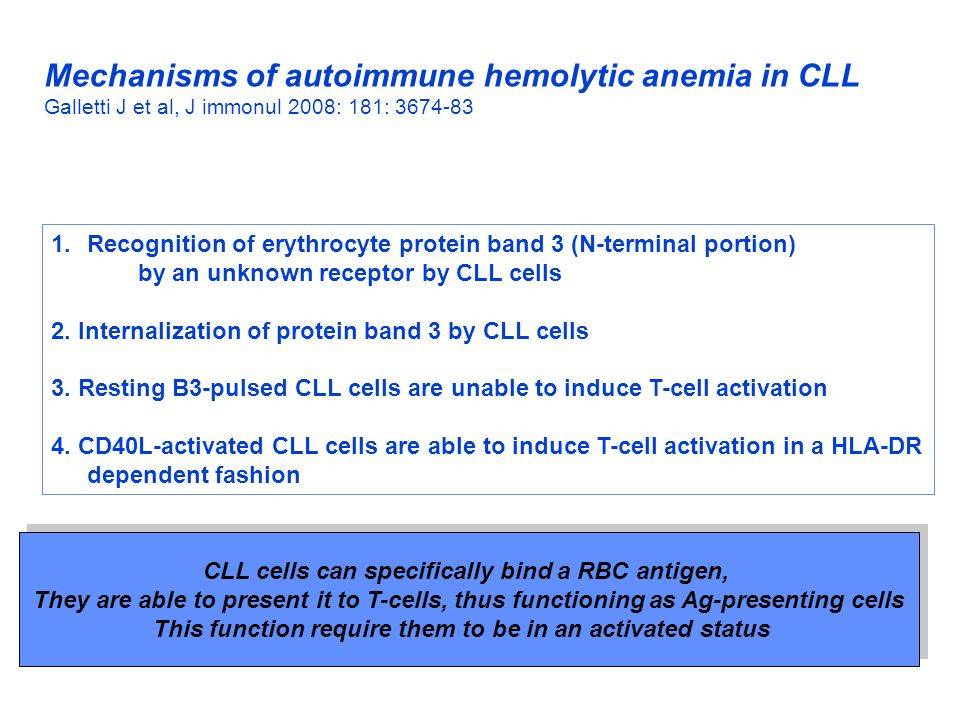 Mechanisms of autoimmune hemolytic anemia in CLL