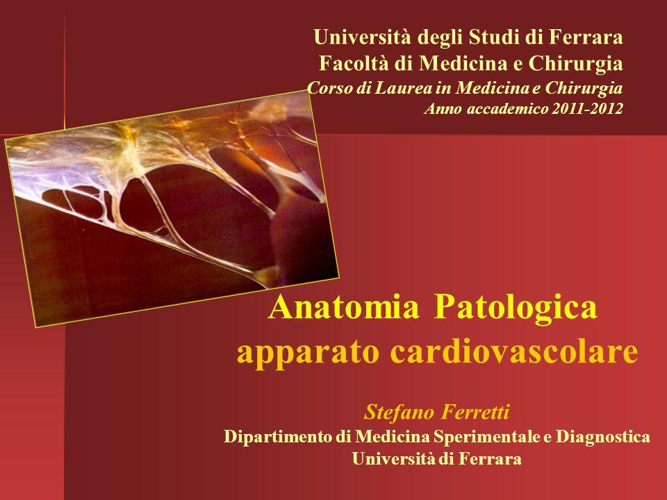 Anatomia Patologica apparato cardiovascolare