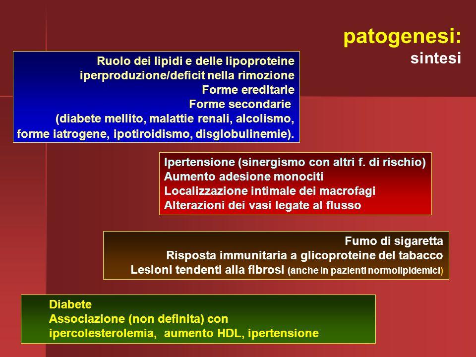 patogenesi: sintesi Ruolo dei lipidi e delle lipoproteine