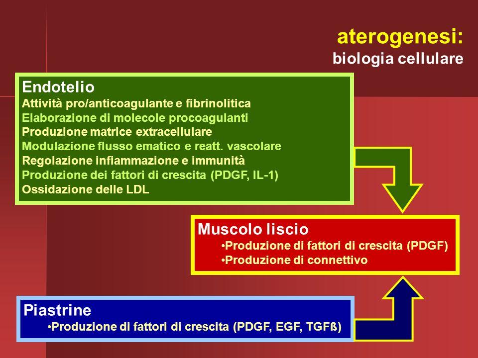 aterogenesi: biologia cellulare Endotelio Muscolo liscio Piastrine
