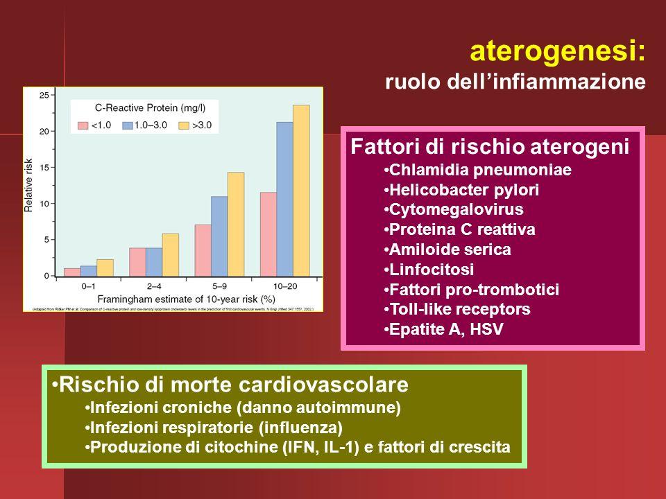 aterogenesi: ruolo dell'infiammazione Fattori di rischio aterogeni