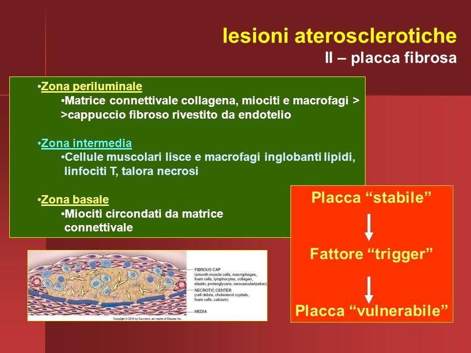 lesioni aterosclerotiche
