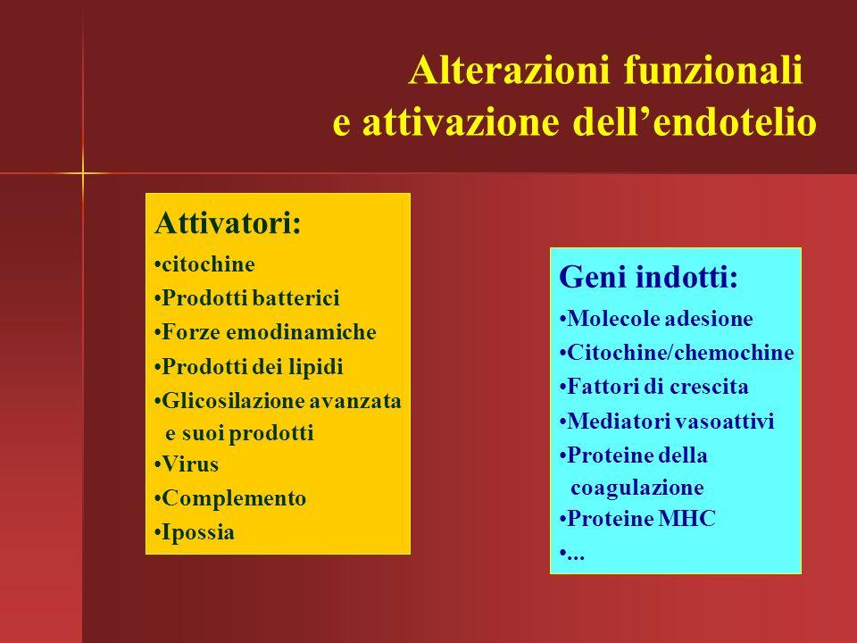 Alterazioni funzionali e attivazione dell'endotelio