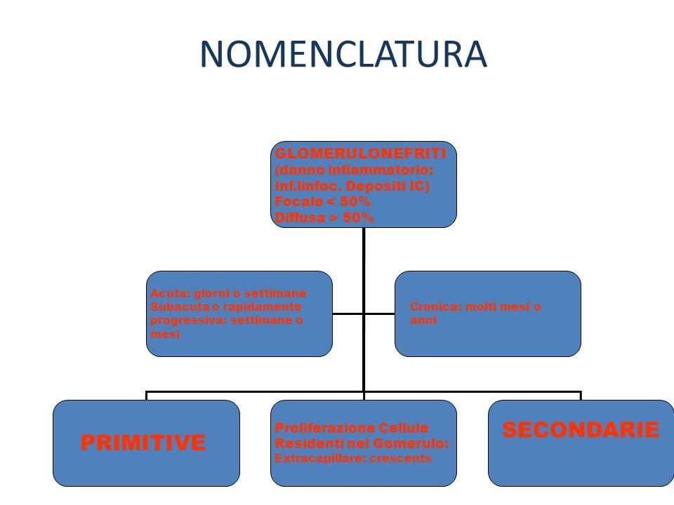 NOMENCLATURA SECONDARIE PRIMITIVE GLOMERULONEFRITI