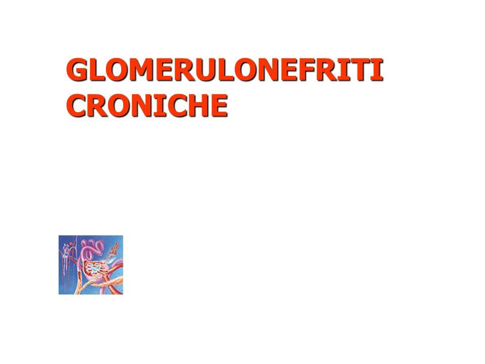 GLOMERULONEFRITI CRONICHE
