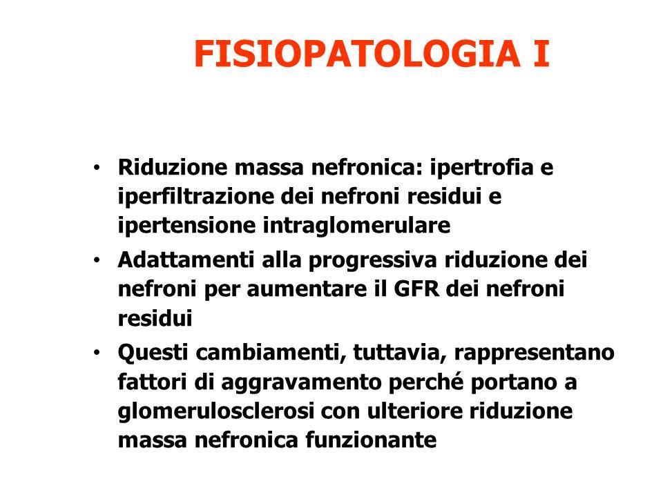 FISIOPATOLOGIA I Riduzione massa nefronica: ipertrofia e iperfiltrazione dei nefroni residui e ipertensione intraglomerulare.