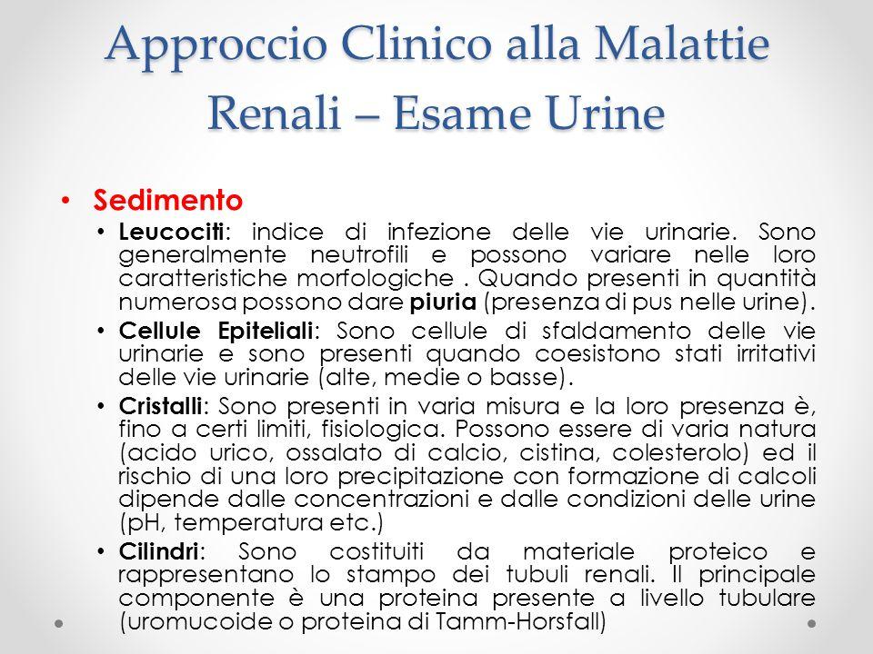 Approccio Clinico alla Malattie Renali – Esame Urine