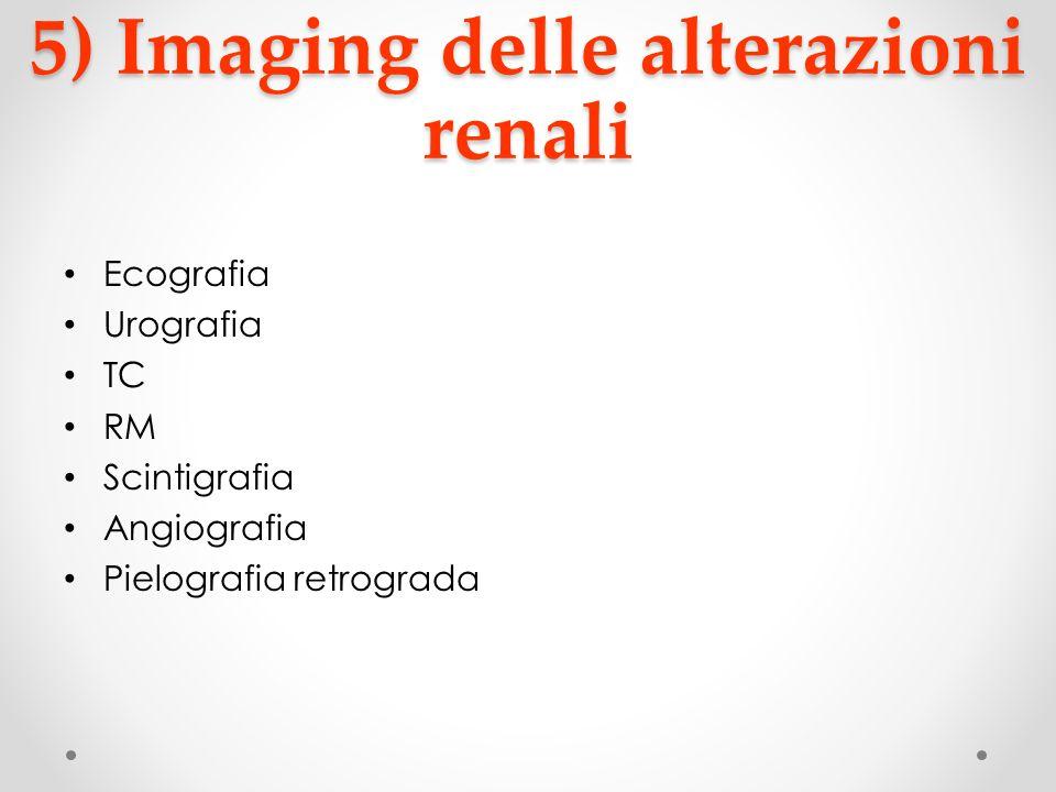 5) Imaging delle alterazioni renali