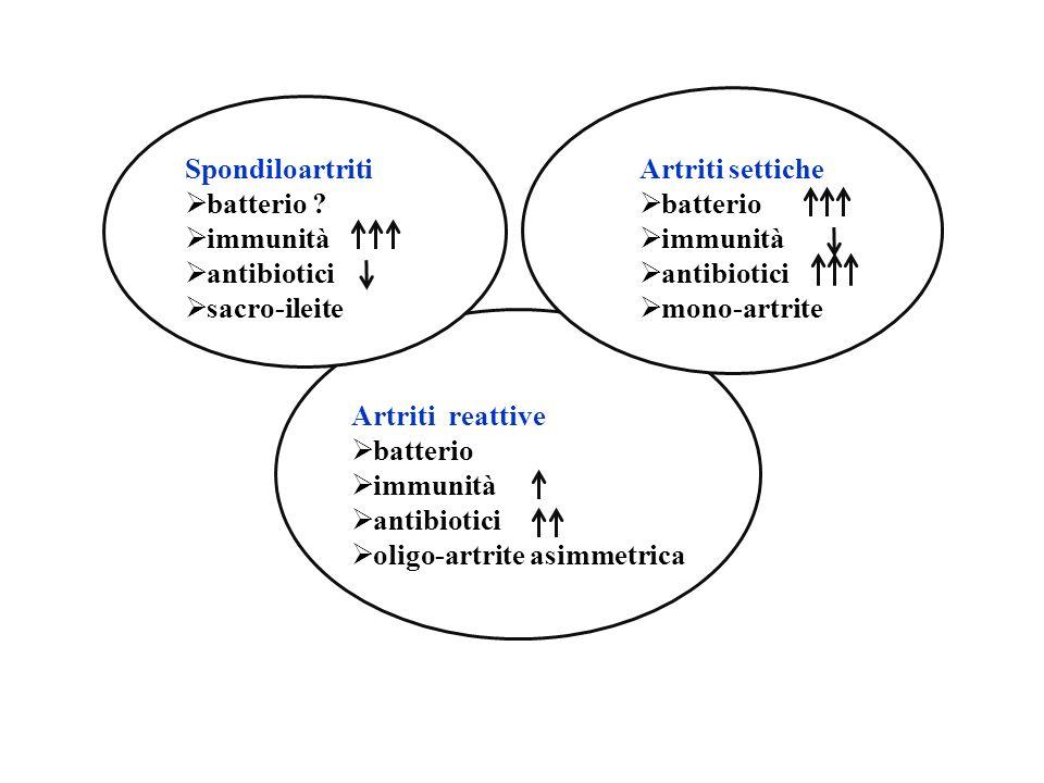 Sps Spondiloartriti batterio immunità antibiotici sacro-ileite