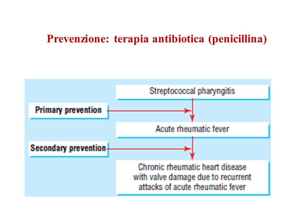 Prevenzione: terapia antibiotica (penicillina)