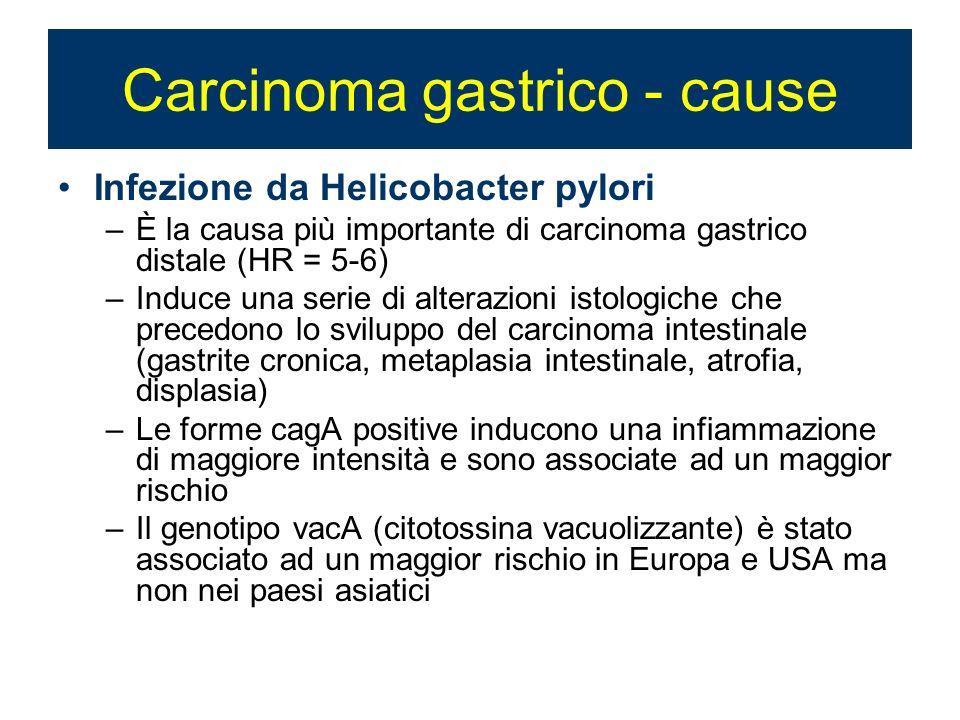 Carcinoma gastrico - cause