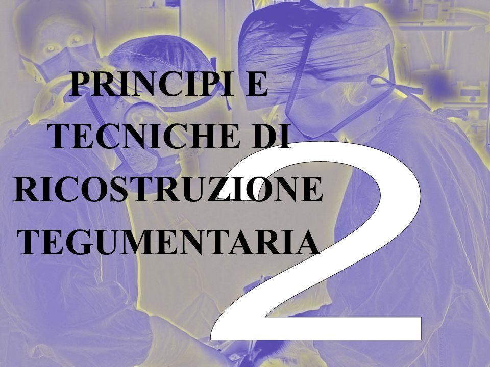 PRINCIPI E TECNICHE DI RICOSTRUZIONE TEGUMENTARIA