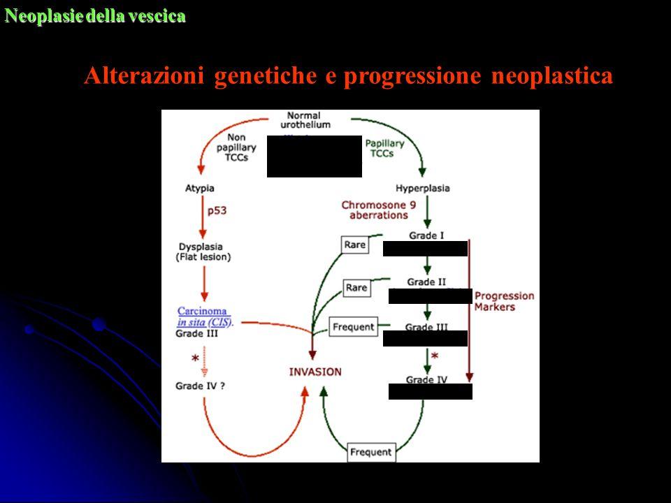 Alterazioni genetiche e progressione neoplastica