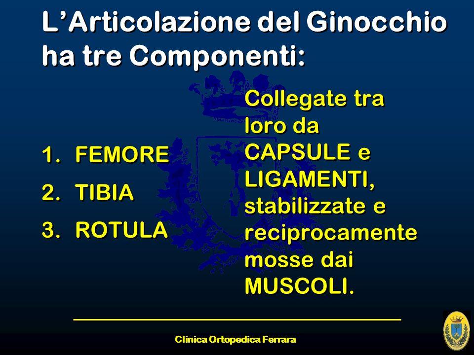 L'Articolazione del Ginocchio ha tre Componenti: