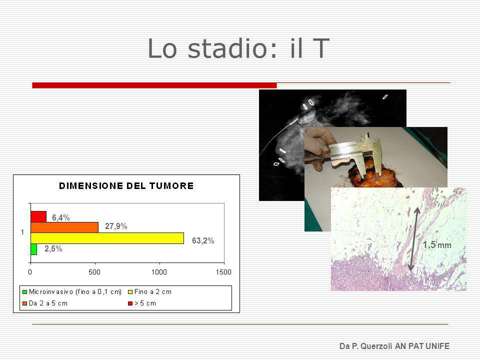 Lo stadio: il T 6,4% 27,9% 63,2% 1,5 mm 2,5% Da P. Querzoli AN PAT UNIFE