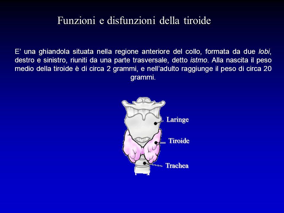 Funzioni e disfunzioni della tiroide