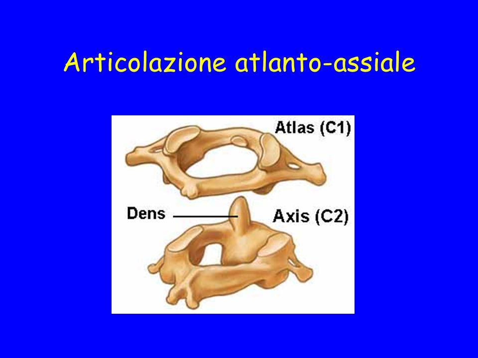 Articolazione atlanto-assiale