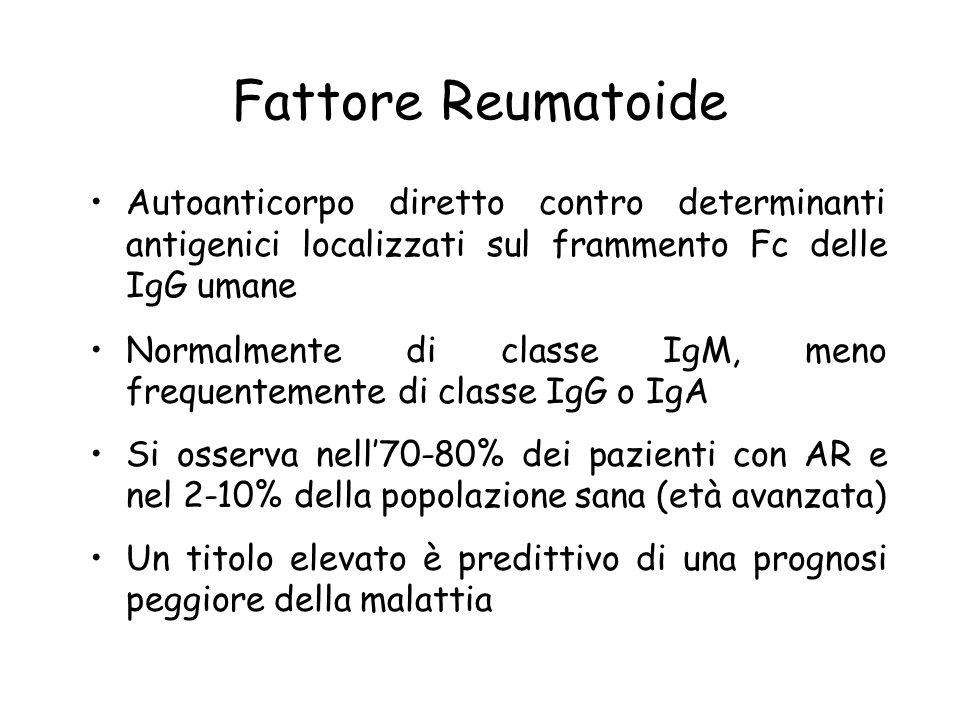 Fattore Reumatoide Autoanticorpo diretto contro determinanti antigenici localizzati sul frammento Fc delle IgG umane.