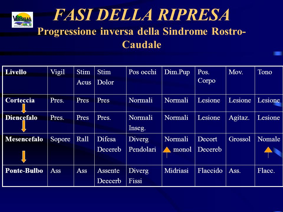 FASI DELLA RIPRESA Progressione inversa della Sindrome Rostro-Caudale
