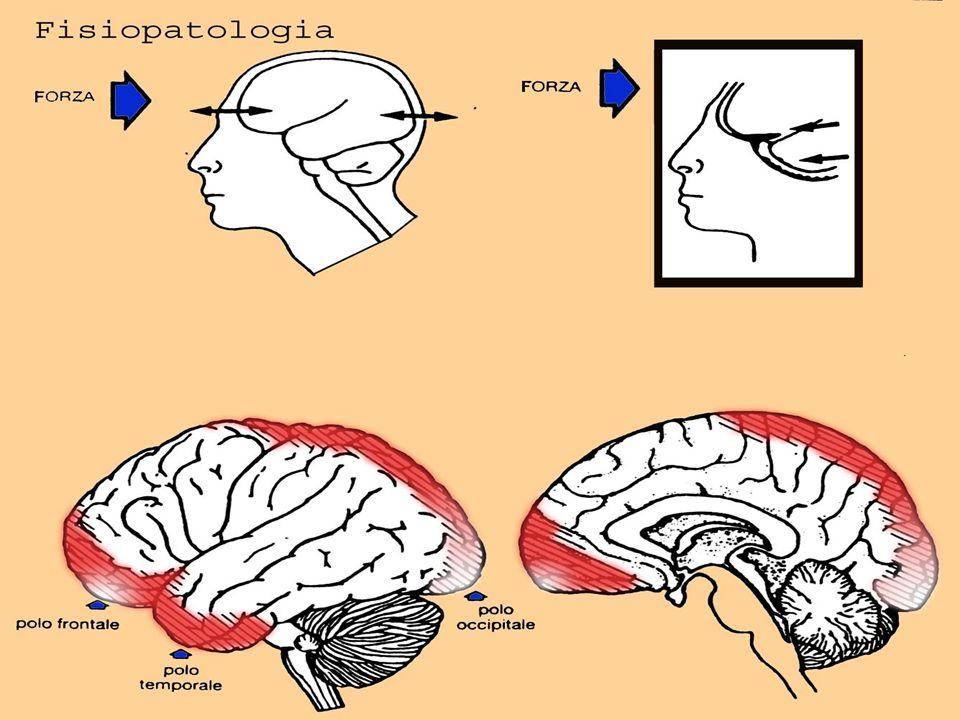 Fisiopatologia 1