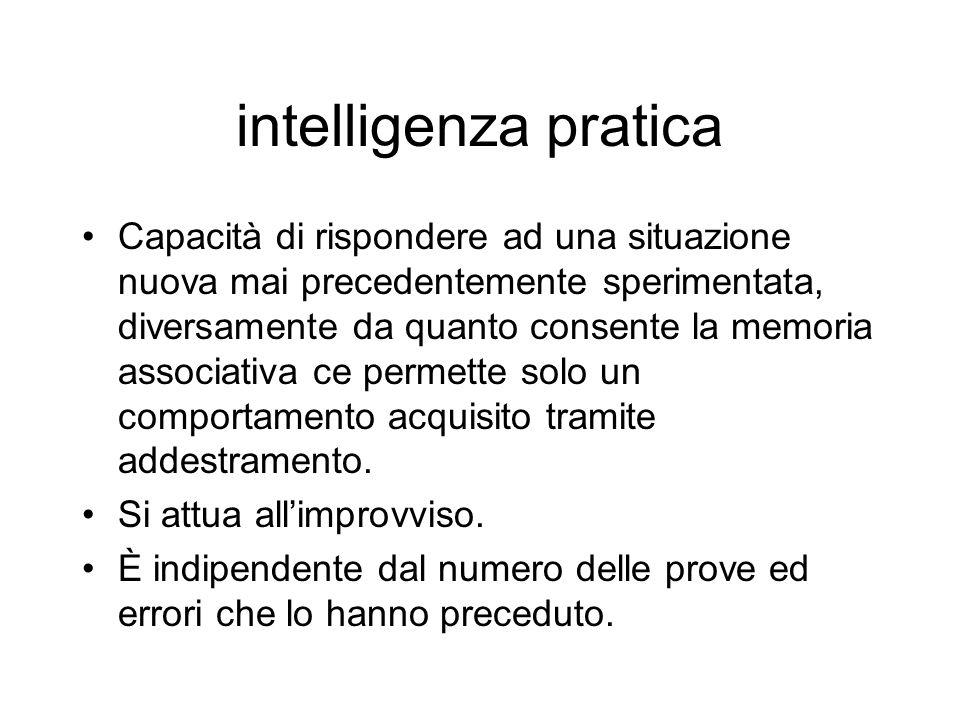 intelligenza pratica