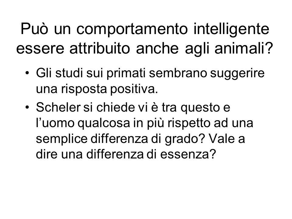 Può un comportamento intelligente essere attribuito anche agli animali
