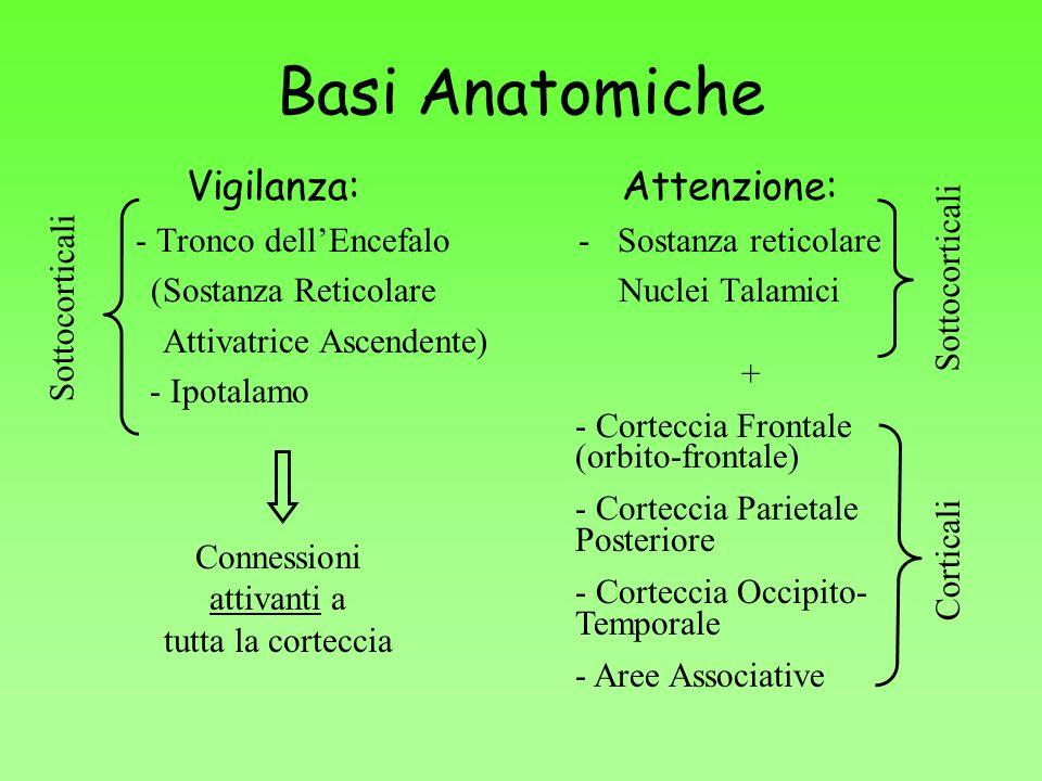 Basi Anatomiche Vigilanza: Attenzione: - Tronco dell'Encefalo