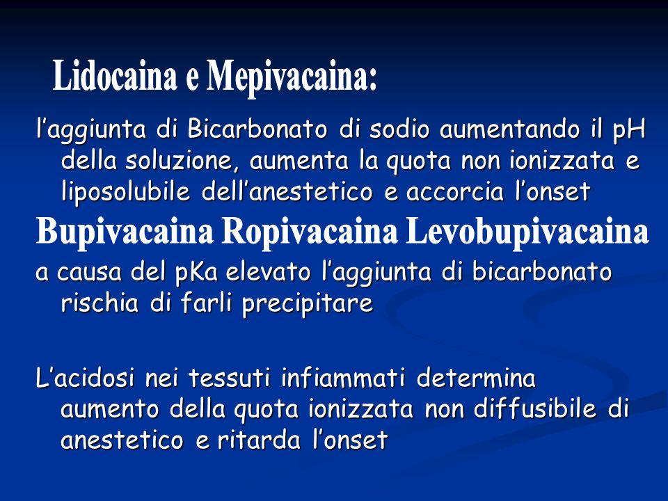 Lidocaina e Mepivacaina: Bupivacaina Ropivacaina Levobupivacaina