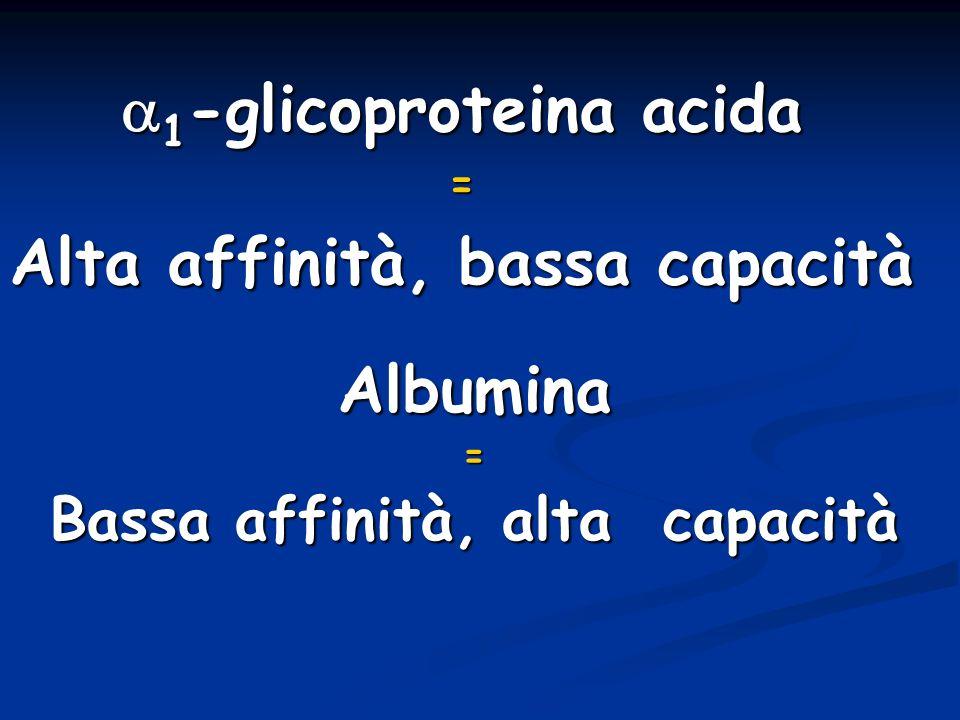 a1-glicoproteina acida Bassa affinità, alta capacità