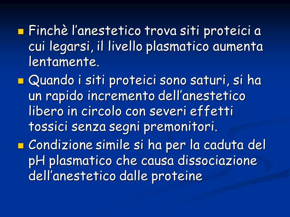 Finchè l'anestetico trova siti proteici a cui legarsi, il livello plasmatico aumenta lentamente.